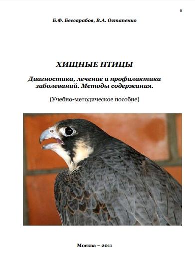 hishnie-ptici-ostapenko