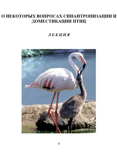 domestic-birds